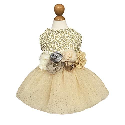 Fitwarm Fancy Sparkling Dog Dress Birthday Party Pet Clothes Flower Tulle Wedding Tutu Cat Gown Gold