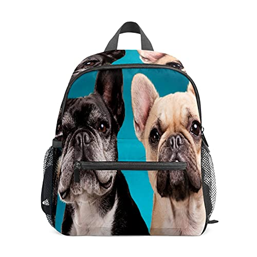 Kids Mini Backpack French Bulldog Cute Puppy Cute Small School Bags Toddlers Daypack for Children Girls Boys Teens Adult Outdoor