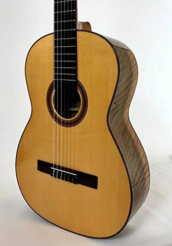 Guitarra TOLEDO TE-20A