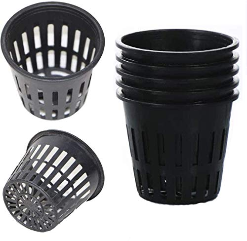 Tangger 50 PCS Net Pot Netztopf Hydrokultur Pflanzkorb Kunststoff,2.5 * 3.2 in Net Cup Pot Töpfe Kunststoff Hydroponics Net Pot Eimer Korb für Hydroponics Supplies Baskets Garten Anlage Wachsen Cup