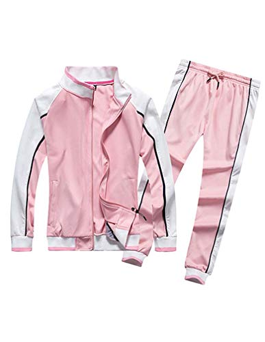Lavnis Women's Tracksuit Plus Size 2 Piece Outfits Hoodie and Pants Sports Sweatsuit Set Style 2 Pink M