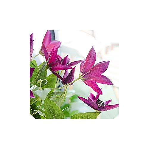 mijn kat Beste drie takken Clematis Levendige Kunstbloemen Plant Huis en Tuin Decoratie 69cm Gift