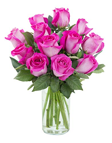 Delivery by Tuesday   Arabella Farm Direct Bouquet of 12 Stems of Fresh Cut Hot Pink Roses in a Free Designer Glass Vase