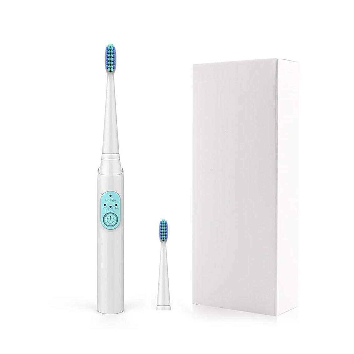毎月和解する乱す電動歯ブラシ 3ファイル電動歯ブラシ子供インテリジェントリマインダー大人の音波振動USB歯ブラシ (色 : A)