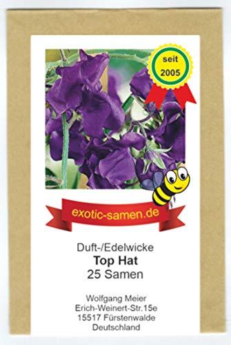 Edelwicke - Duftwicke - Bienenweide - Top Hat - herrliche Duftend - bis 200 cm - 25 Samen