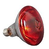 BestSiller Lámpara de calor infrarrojo de 250 W, resistente al agua, luz antiexplosión, bombillas de calentamiento rojo engrosadas para lechón pollo pato aves