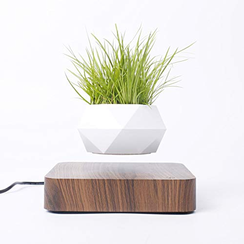 Levitating Air Bonsai Pot Rotation Bloempot Planters magnetische ophanging Drijvende Pot Potplant Home Desk Decor: China, licht houten basis