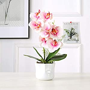 KINBEDY Artificial Bonsai Silk Orchids Phalaenopsis with Vase Home Office Decoration Party Wedding Decor.