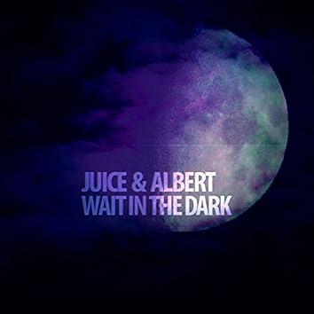 Wait In The Dark