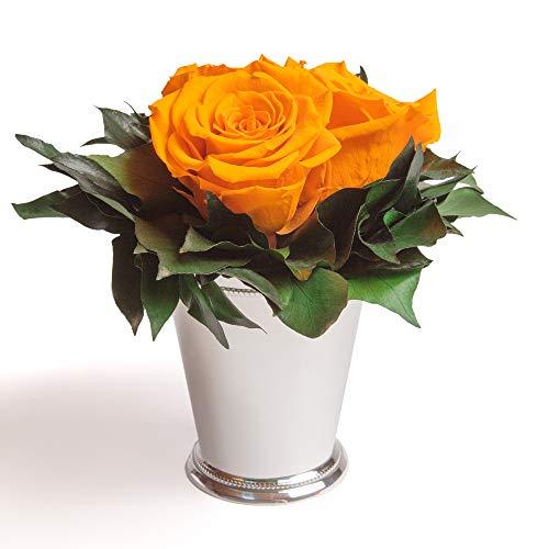 ROSEMARIE SCHULZ Heidelberg Infinity Blume in silberfarbenen Becher 3 konservierten Rosen Blumenarrangement langhaltend (Gelb, 3 Rosen)