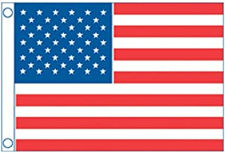 Taylor Made Products 8430 U.S. 50 Star Sewn Boat Flag,  20 x 30 inch
