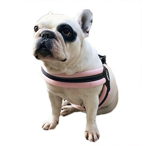 Hondenharnas borstband vest zacht pupperglas Walking borsttuig reflecterend harnas tuig verstelbare met 1,5 meter hondenriem voor kleine en middelgrote honden, Large, roze