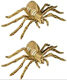 Charmed By Dragons 2 Spider Skeleton Decorations Spooky Halloween Home Decor (2 Spider Skeletons)