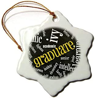 Emily Christmas Ornament Chalkboard Word Art for The Graduate Snowflake Decorative Hanging Porcelain Ornament