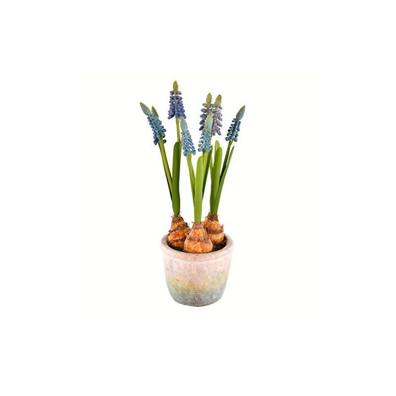 "silk flower arrangements vickerman 10"" blue hyacinths in container. artificial-flowers, 10.6"", 2 piece"