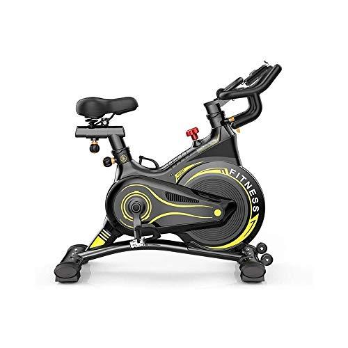 MGIZLJJ Bicicletas de Ejercicio Profesional de Interior, con medidor electrónico de visualización: SCAN, Velocidad, Tiempo, Distancia
