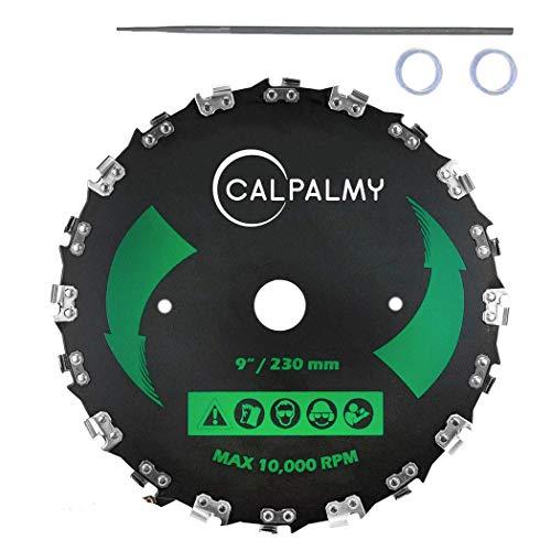 CalPalmy 9