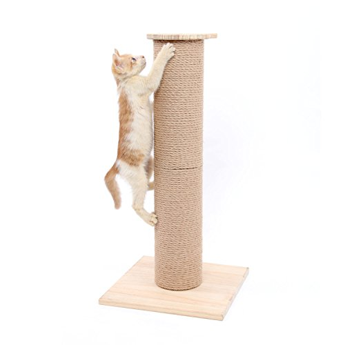 SWEET DEVIL Árbol Rascador para Gatos con Poste Rascadore Estabilidad con Columna de Sisal Natural,Grande,65 cm de Altura