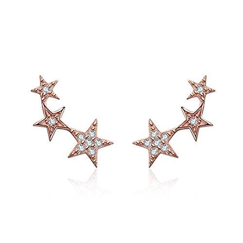 Orecchini in argento sterling 925, Oro rosa Stile delle stelle Orecchini con Cubic Zirconia Diamante simulato Gioielleria di moda Regali per donne donne Ragazze… (Rose)