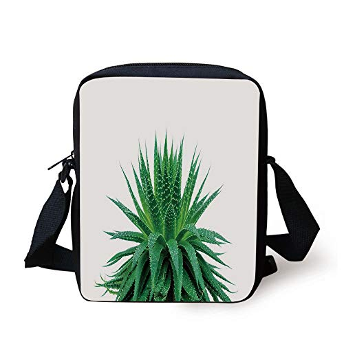 Plant,Medicinal Aloe Vera with Vibrant Colors Indigenous Species Alternative Natural Remedy,Fern Green...