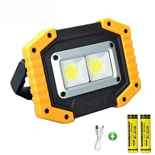 longdafei Rechargeable Floodlight, 30W LED Rechargeable Work Light Outdoor Floodlight Camping Lights with USB Waterproof for Outdoor Camping Traveling Fishing Security Lights