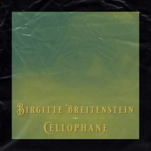 Birgitte Breitenstein