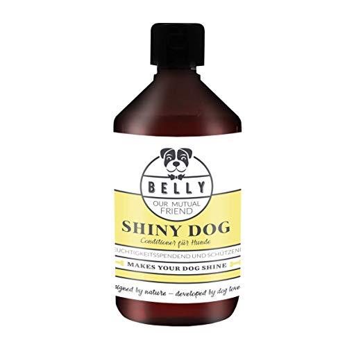 Hunde Conditioner Shiny Dog von Belly in der 500ml Flasche I Natürlicher Conditioner & Shampoo für Hunde I Pflege und Schutz in einem kombiniert I Verhindert Verfilzungen und trockenes Haar