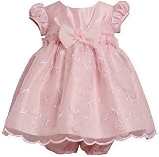 Bonnie Baby Girls' Empire Waist Dress with Embroidered Skirt