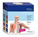 Sport-Tec Prometheus Lernkarten der Anatomie, 460 Karten