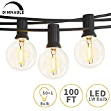 Svater Outdoor String Lights,100ft with 50 Dimmable Waterproof G40 LED Globe Bulbs - Clear Glass 1W 2700K Warm Glow for Indoor/Outdoor Hanging Lighting