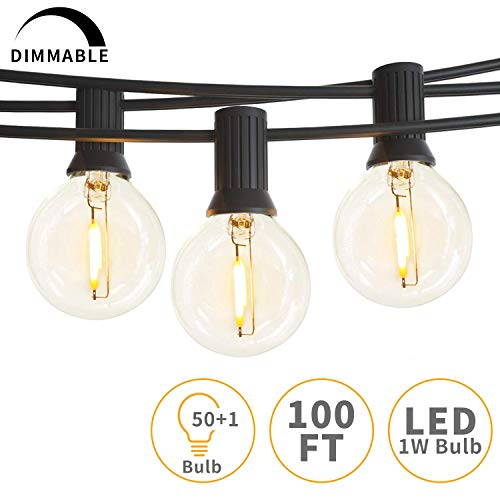 Svater Outdoor String Lights,100ft with 50 Dimmable Waterproof G40 LED Globe Bulbs - Clear Glass 1W...