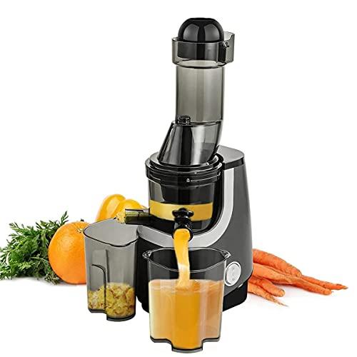Juicer Machine, Slow Masticating Juicer, Wide-Groove Slow Chewing Juicer voor Fruit en Groenten Juicer BPA-Free, gemakkelijk schoon te maken fruitpersmachines TNSYGSB