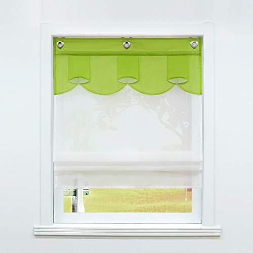 SCHOAL Raffrollo ohne Bohren Raffgardinen mit U-Haken Küche Gardinen mit Ösen Transparent Voile Ovale Figur Muster Grün BxH 120x140 1 Stück