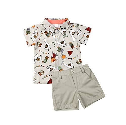 Boy Flamingo Short Sleeve Button Down Shirt & Pink Shorts Pants Kids Summer Outfits 1-6 T Clothes Set (Light Gray Alpaca, 18-24Months)