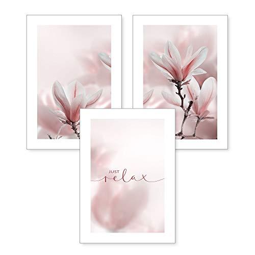 3-teiliges Premium Poster-Set | Magnolie | Deko Bild für Ihre Wand | optional mit Rahmen | Wohnzimmer Schlafzimmer Modern Fine Art | DIN A4 / A3 (A4, ohne Rahmen)