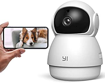 YI Camera Dog Camera with Phone App Pet