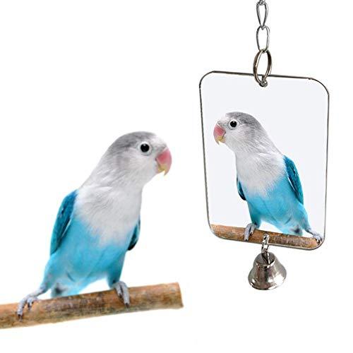 VektenxiVogel Zubehör, Papagei Vogel Sittich hängenden Spiegel Glocke Spielen Spielzeug Käfig Dekoration Heimtierbedarf sehr praktisch