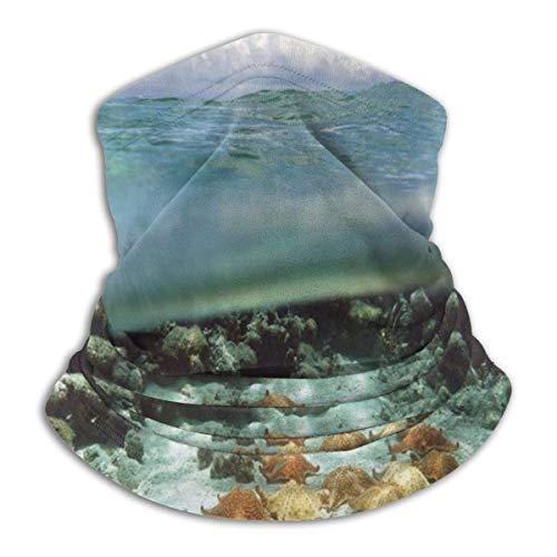 Geteilte Ansicht mit Sky Clouds Sea Wildlife und Ocean Rocks Neck Warmer Gamasche Face Neck Gaiter Bandana Balaclavas