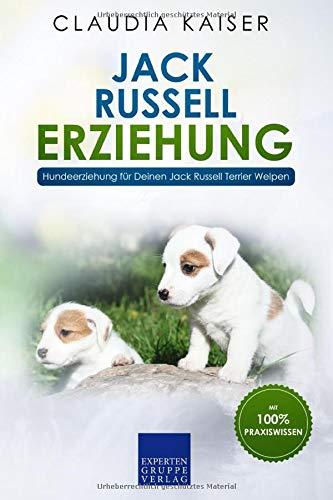 Jack Russell Erziehung: Hundeerziehung für Deinen Jack Russell Terrier Welpen