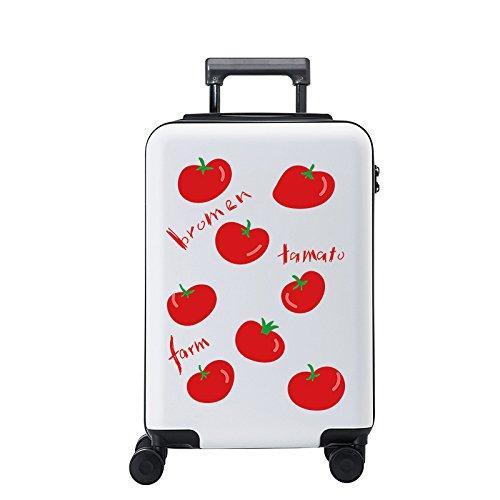 Equipaje Lyl Maleta Ligera de la Maleta TSA Lock PC Funda rígida de la Bolsa de Viaje Carry on Luggage Mano con Las Ruedas de la rotación 360⁰, 2 tamaños-20,24 Pulgadas Caso Maleta Aprobado