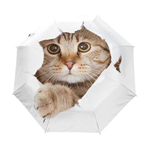 JxLinAAHH Faltbarer Regenschirm für Damen, Schwarz, hochwertig, automatischer Sonnenschirm, UV-Schutz, süßes Katzen-Muster, Sonnenschutz, Strand-Sonnenschirm Artikel 2
