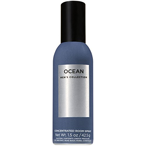 Bath and Body Works Concentrated Room Spray Mens Collection (Ocean)