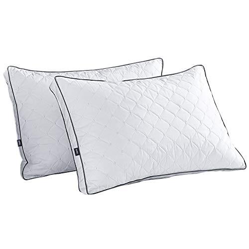 Amazon Brand - Umi AlmohadasdePlumón y Plumas de Ganso BlancoconFunda de100%Algodón,Bordado Dot Cojín, 48x74x5cm,Packde2