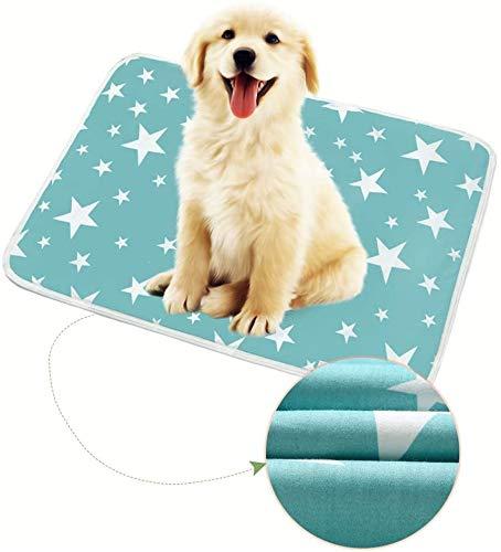 YANGDD 2 Stück maschinenwaschbare Hundematte für Welpen, wiederverwendbare Welpen-Trainingspads, super Absorption, auslaufsicher, rutschfest, für Katzen, Hunde, Kaninchen, 50 x 70 cm