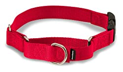 Pet Safe Martingale Collar