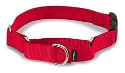 Pet Safe Martingale Collar