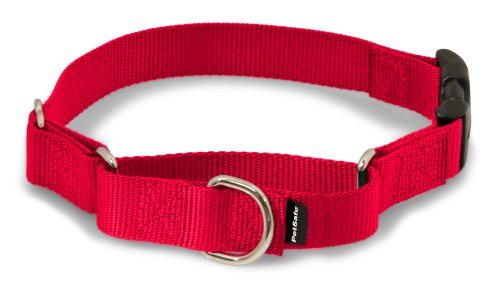 "PetSafe Martingale Collar with Quick Snap Buckle, 3/4"" Small, Red"