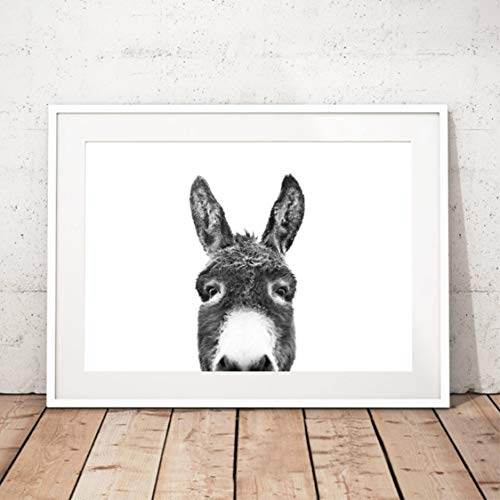 Danjiao Wohnkultur Drucke Wandkunst Malerei Peekaboo Tier Gesicht Esel Bilder Nordischen Stil Poster Modulare Leinwand Nacht Hintergrund Wohnzimmer 40x60cm