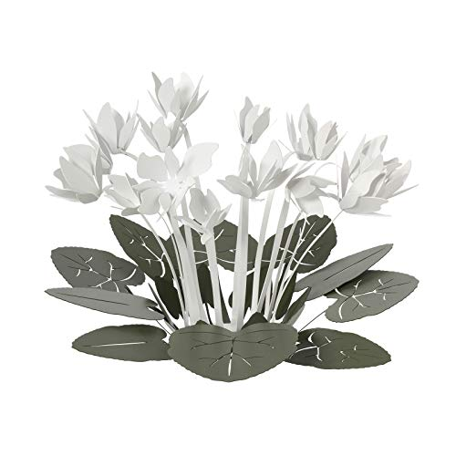 ARTI E MESTIERI Ciclamino CENTROTAVOLA Decorativo Verde Bianco Design Moderno