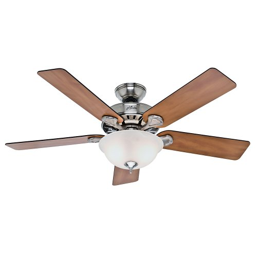 Hunter Fan Company 53249 Hunter Pro Best Indoor Ceiling Fan with Pull Chain Control, 52